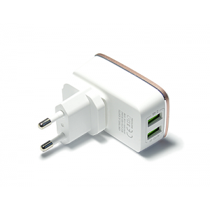 Зарядное устройство Ldnio 2 USB 2.4A + micro USB кабель (A2204) Белый
